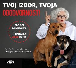 Zvoncica Vuckovic s psima