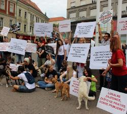 članice Mreže i psi pozvali na provedbu Zakona