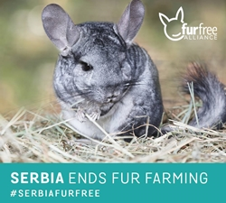 Serbia Bans Raising Animals for Fur