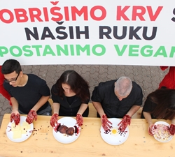 Performance on the Occasion of World Vegan Day